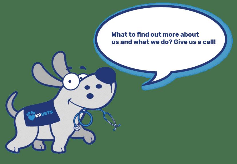 Dog-Mascot-About-Us-01