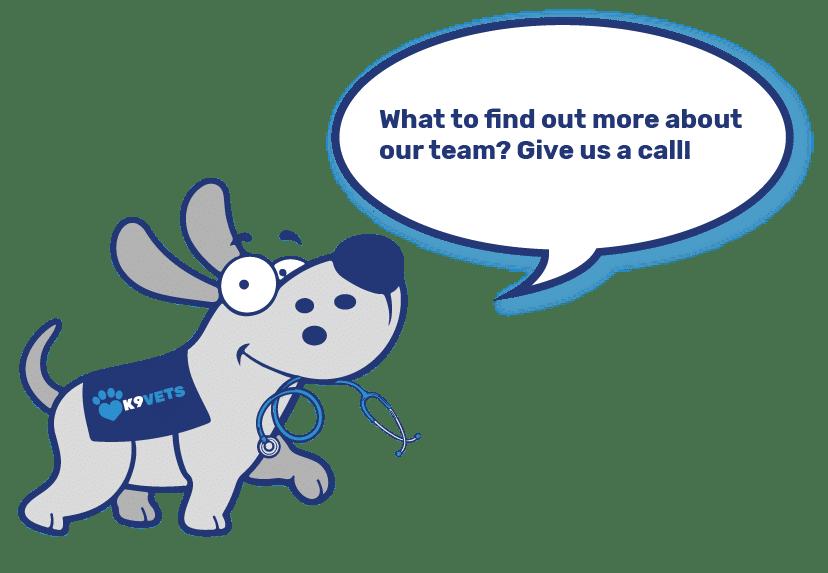 Dog-Mascot-Team